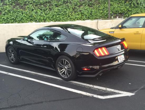 The Hills Hotel, an Ascend Collection by Choice Hotels: Here's my sweet Mustang rental complete with the Pony Package. Photo is to show the parking lot