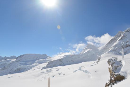 Grindelwald, Switzerland: Just gorgeous