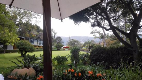 Quinta da Casa Branca: breakfast view