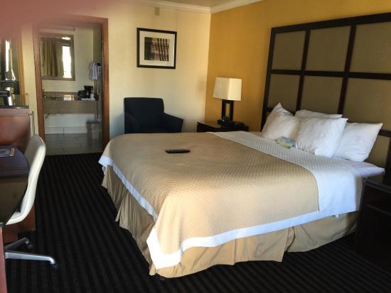 Days Inn Pensacola - Historic Downtown : Standard King Room