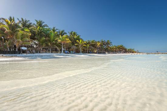 Beachfront Hotel La Palapa: Our Private Beach