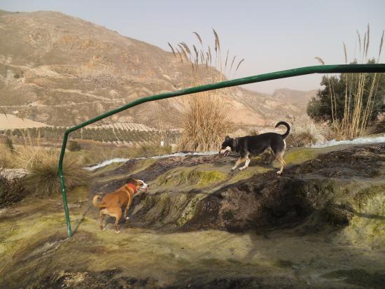 Acueducto Natural de El Toril