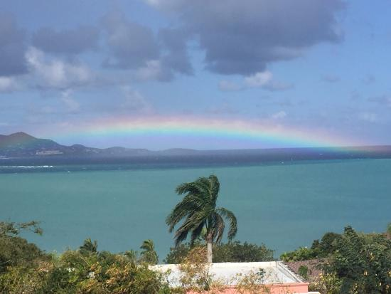 The Buccaneer -- St Croix: View from The Lounge