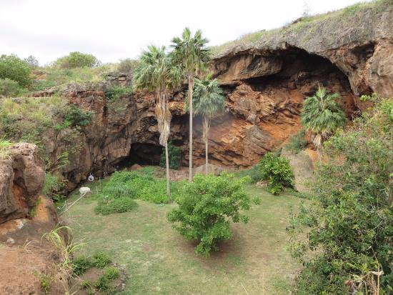 Kalaheo, HI: From outside the cave