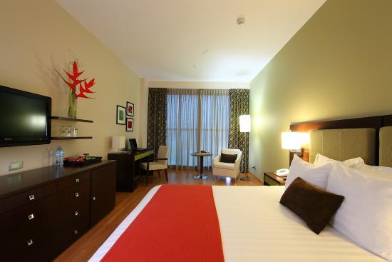 Hotel Ciudad de David: Executive 1 Queen Bed