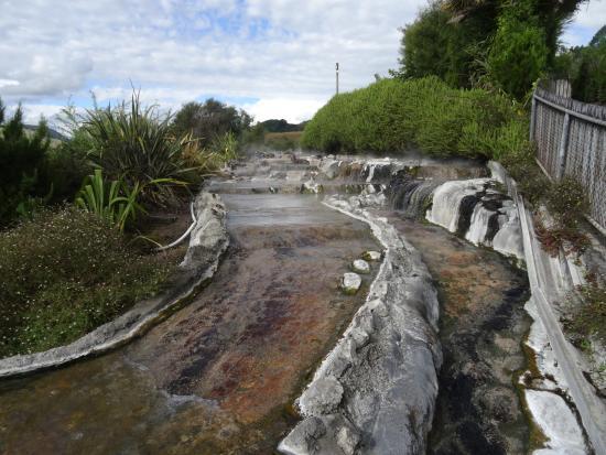 Wikitoria Maori Healing : Thermische bronnen in Waikite Valley