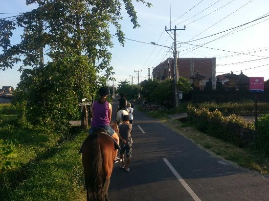 Bali Horse Adventure : 20160321_174225_large.jpg