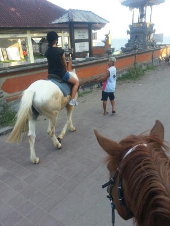 Bali Horse Adventure : 20160321_174916_large.jpg