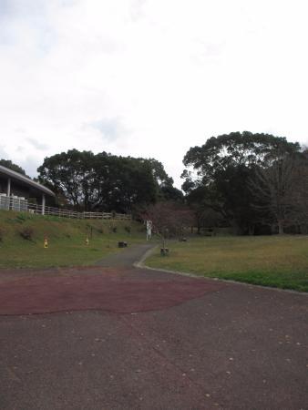 Iwatoyama History Museum