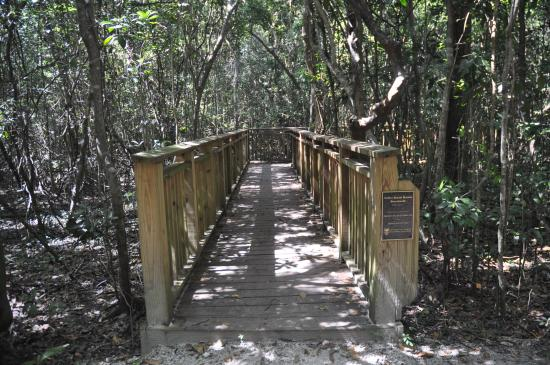 walkway to the Indian burial mound You must be on the guided