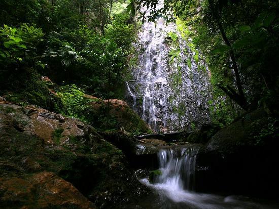 Parque Nacional La Tigra
