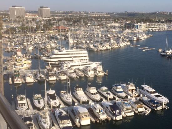 Great Hotel, Good Location in Marina del Rey