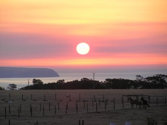 Carrickalinga, Australia: Sunset from the Front Verandah