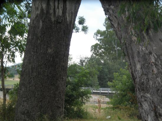 Whitfield, Australia: Area A Unpowered - West Side King River