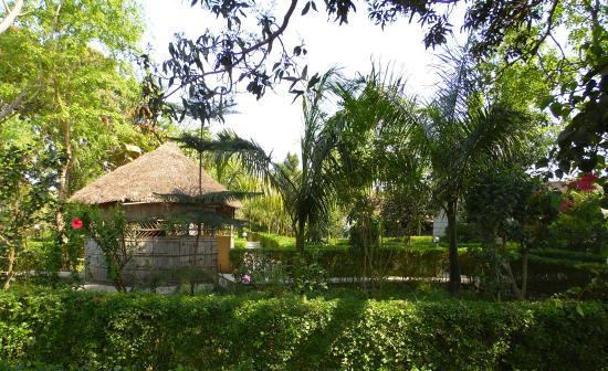 Photo of Bardia Kingfisher Resort Royal Bardia National Park
