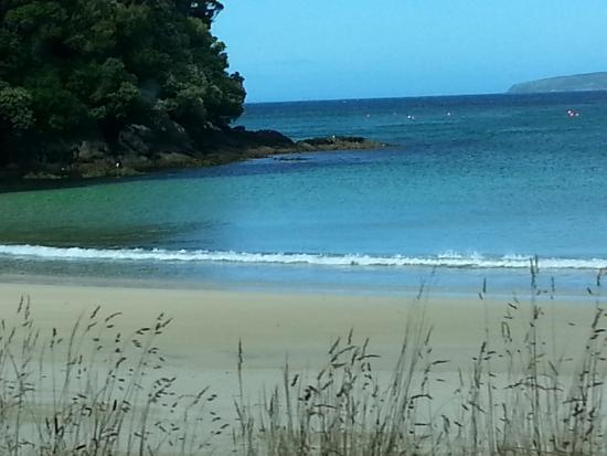 Village & Bays Tours - Stewart Island Experience : Beautiful bays