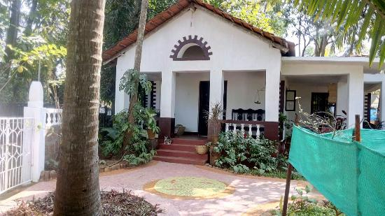 Ashima Goa Ayurvedic, Yoga & Meditation Center