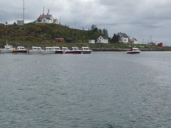 Vannareid, Noruega: parkingplace boats. You can see the amazing Lighthouse in the background.