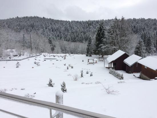Imagen de Hotel Waldlust