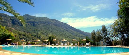 Paradise Garden Hotel: Ana Havuz
