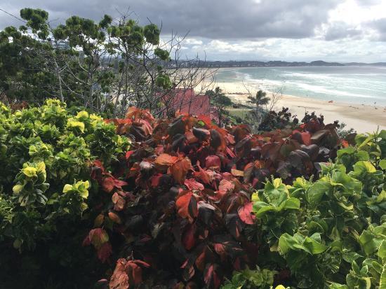 Kirra Beach: photo8.jpg