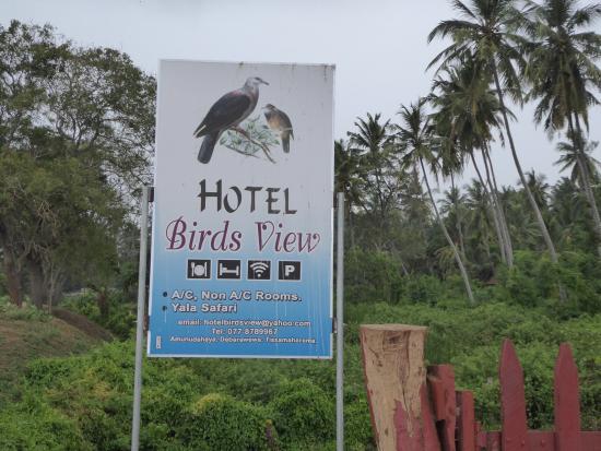 Hotel Birds View