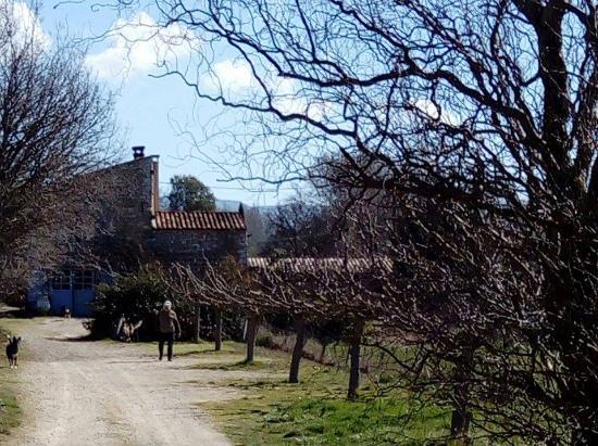 Moissac-Bellevue, Γαλλία: La ferme de Célestine