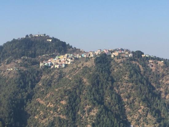 Shimla Nature Ville