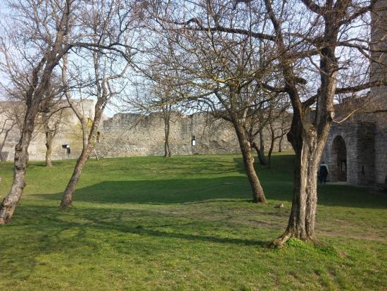 Hainburg an der Donau 사진