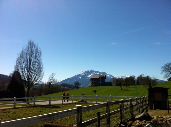 Ebikon, Sveits: Schöne Ausblicke auf die Berge