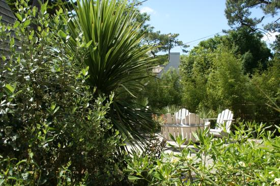 La Villa Marine : jardin