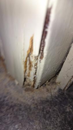 Aparthotel Wellington: Rotten door frame in bathroom