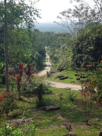 Toledo District, Belize: The road leading in and out