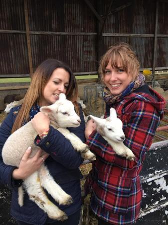 Walkington, UK: Us visiting the new arrivals!