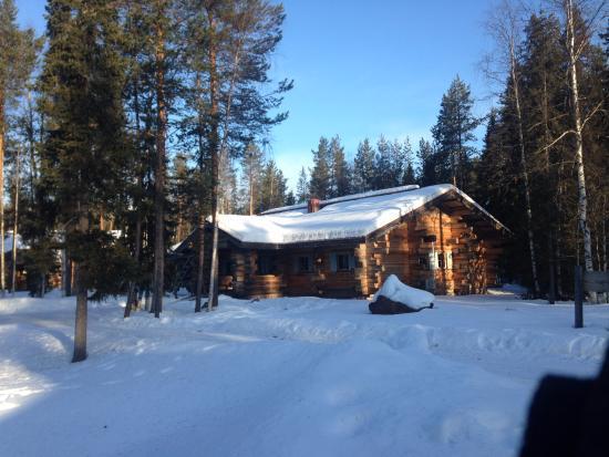 lodge privato picture of wild nordic finland rovaniemi tripadvisor rh tripadvisor com