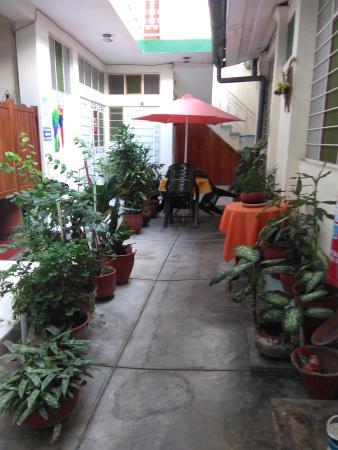 Hostal El Colibri: El Jardín