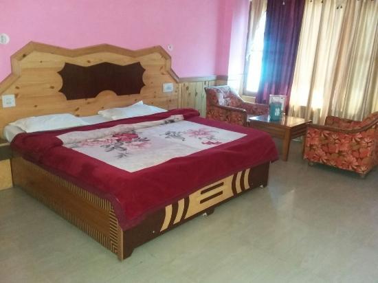 Hotel Nandini Palace : Room