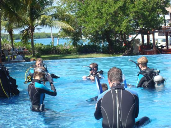 Paradise Divers: Discover Scuba Diving Class - Kids from Minn & Colo
