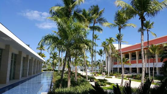 barcelo bavaro palace deluxe picture of barcelo bavaro palace rh tripadvisor com