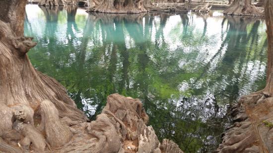Camecuaro, Mexico: lago