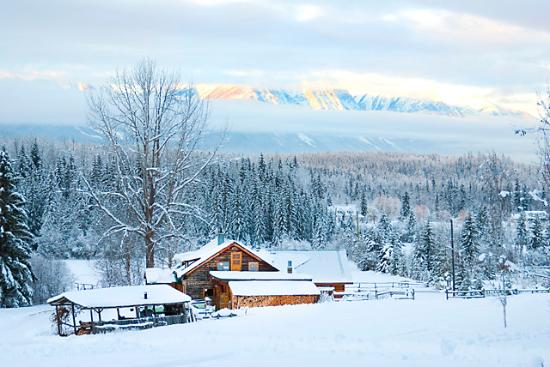 Blaeberry Mountain Lodge: winter wonderland