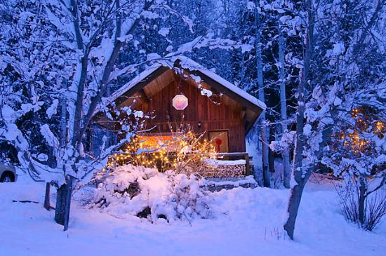 Blaeberry Mountain Lodge: winter cabin