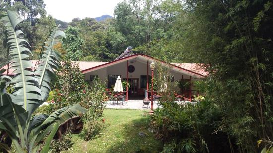 Cielito Sur Bed and Breakfast: View of central communal area