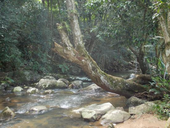 Cachoeira Bar Siriu