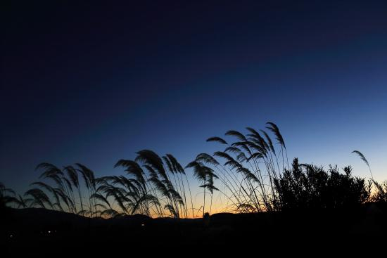 Twizel, نيوزيلندا: Sun Set at Matuka Lodge