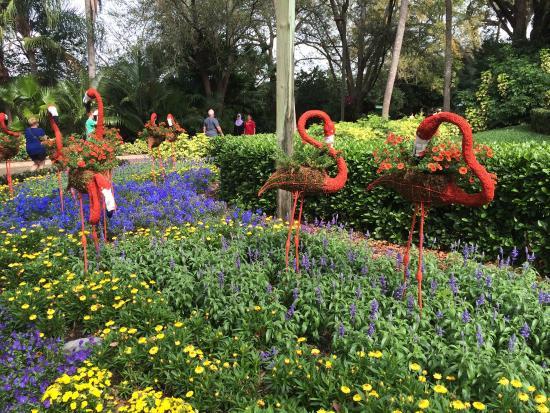 Busch Gardens Tampa Picture Of Busch Gardens Tampa