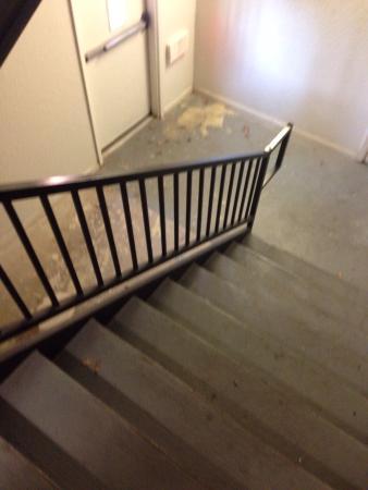 Captain Inn & Suites: Stairwell