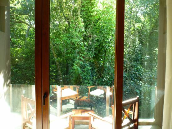 Mercure Iguazu Hotel Iru: Jungle view