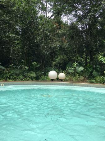 Mercure Iguazu Hotel Iru: Spa pool