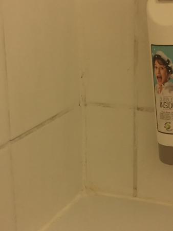 t 226 che sur le lit et peinture sur le carrelage de la salle de bain digne d un enfant pour cacher
